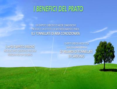 I Benefici Del Prato